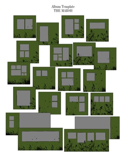 album-the-marsh.jpg